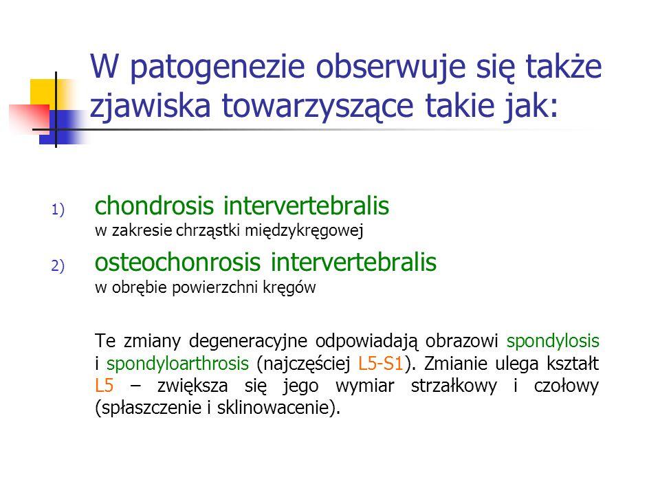 W patogenezie obserwuje się także zjawiska towarzyszące takie jak: 1) chondrosis intervertebralis w zakresie chrząstki międzykręgowej 2) osteochonrosi