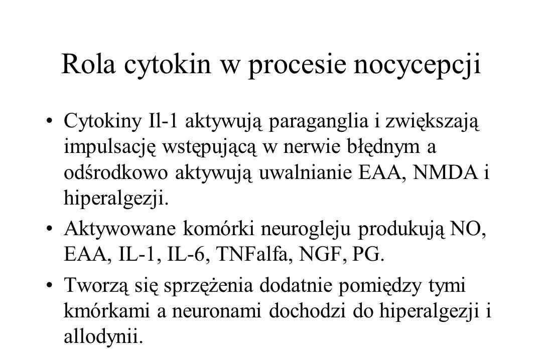 Rola cytokin w procesie nocycepcji Cytokiny Il-1 aktywują paraganglia i zwiększają impulsację wstępującą w nerwie błędnym a odśrodkowo aktywują uwalni