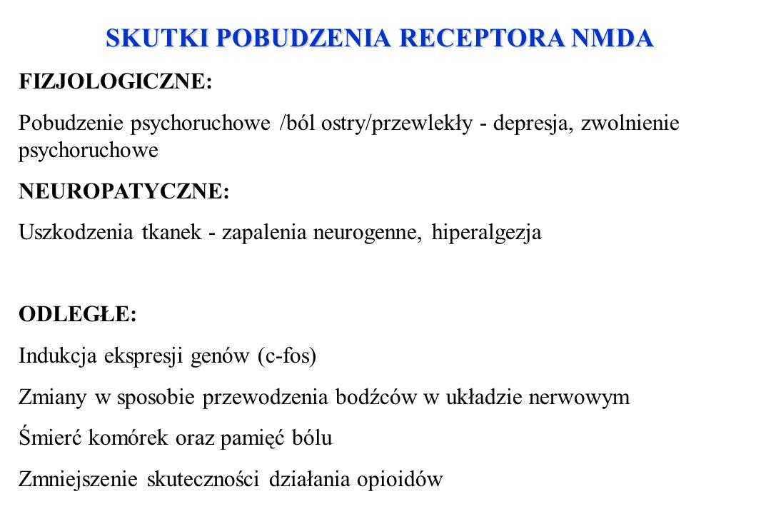 SKUTKI POBUDZENIA RECEPTORA NMDA FIZJOLOGICZNE: Pobudzenie psychoruchowe /ból ostry/przewlekły - depresja, zwolnienie psychoruchowe NEUROPATYCZNE: Usz