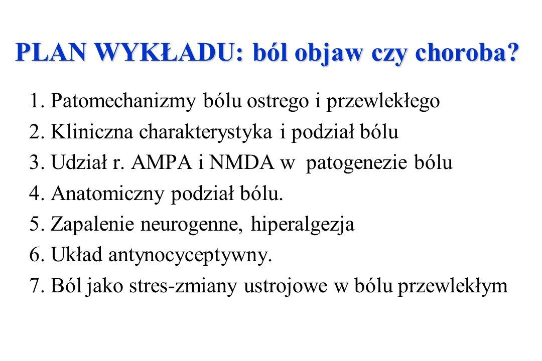 1. Patomechanizmy bólu ostrego i przewlekłego 2. Kliniczna charakterystyka i podział bólu 3. Udział r. AMPA i NMDA w patogenezie bólu 4. Anatomiczny p