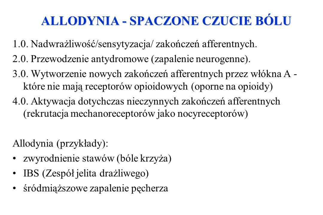 ALLODYNIA - SPACZONE CZUCIE BÓLU 1.0. Nadwrażliwość/sensytyzacja/ zakończeń afferentnych. 2.0. Przewodzenie antydromowe (zapalenie neurogenne). 3.0. W