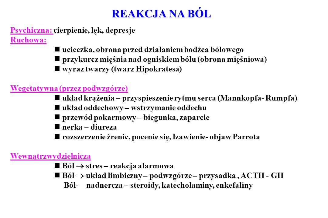 REAKCJA NA BÓL Psychiczna: cierpienie, lęk, depresje Ruchowa: ucieczka, obrona przed działaniem bodźca bólowego przykurcz mięśnia nad ogniskiem bólu (