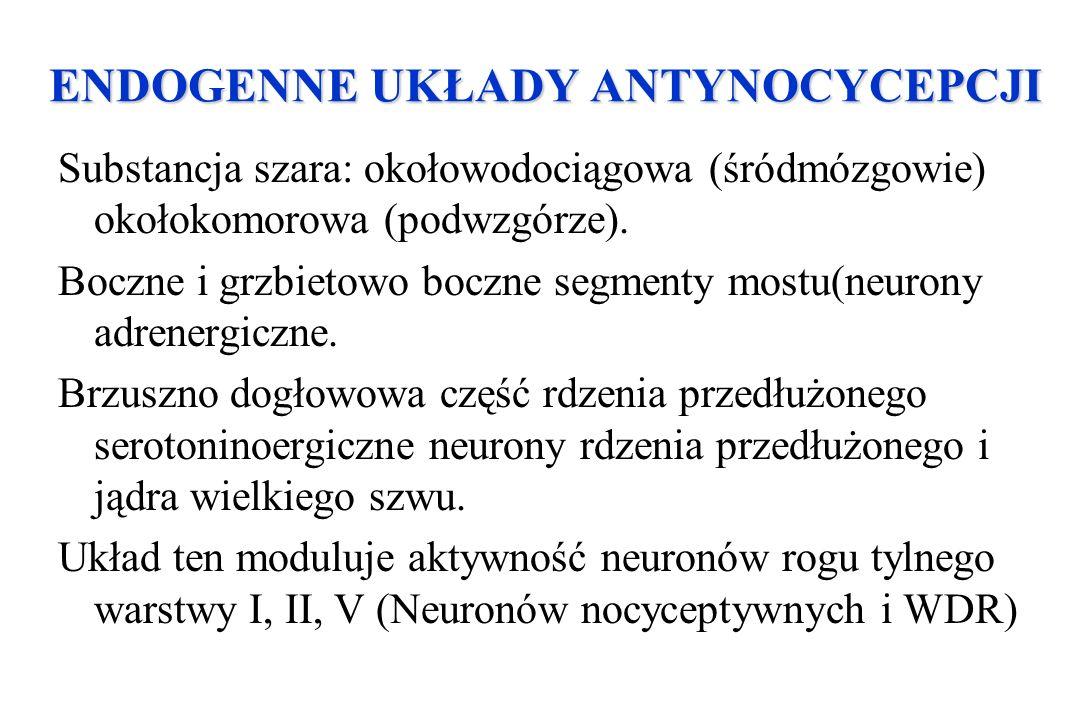 ENDOGENNE UKŁADY ANTYNOCYCEPCJI ENDOGENNE UKŁADY ANTYNOCYCEPCJI Substancja szara: okołowodociągowa (śródmózgowie) okołokomorowa (podwzgórze). Boczne i