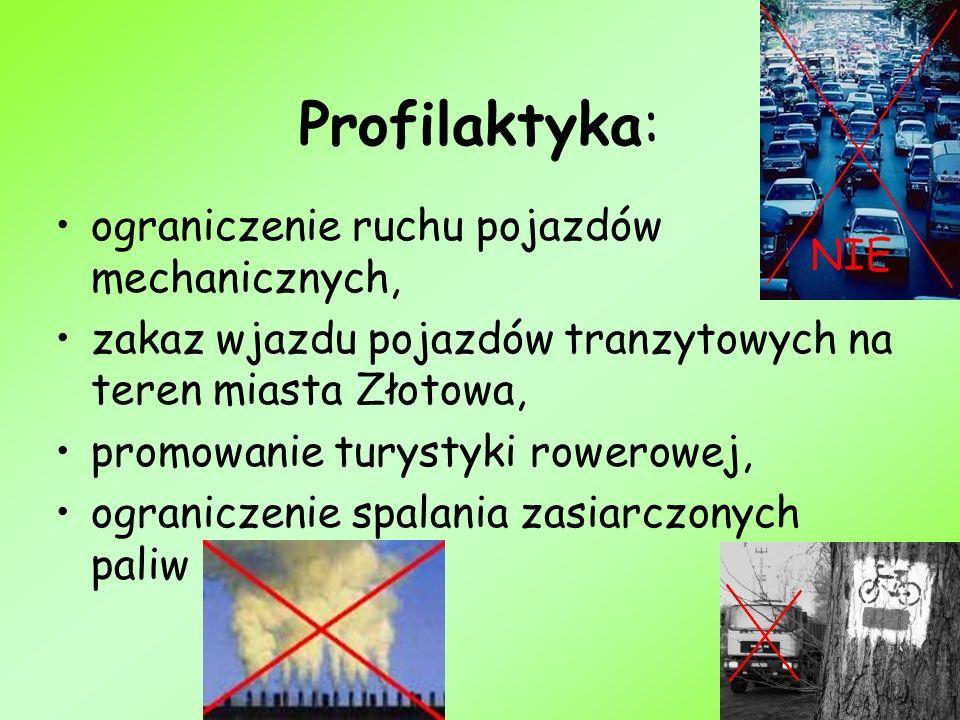 Profilaktyka: ograniczenie ruchu pojazdów mechanicznych, zakaz wjazdu pojazdów tranzytowych na teren miasta Złotowa, promowanie turystyki rowerowej, o