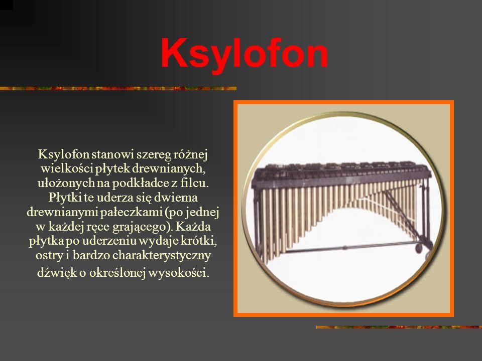 Wibrafon Wibrafon to instrument składający się z metalowych płytek umieszczonych na poziomej ramie, pod którymi znajdują się rury rezonansowe, mające