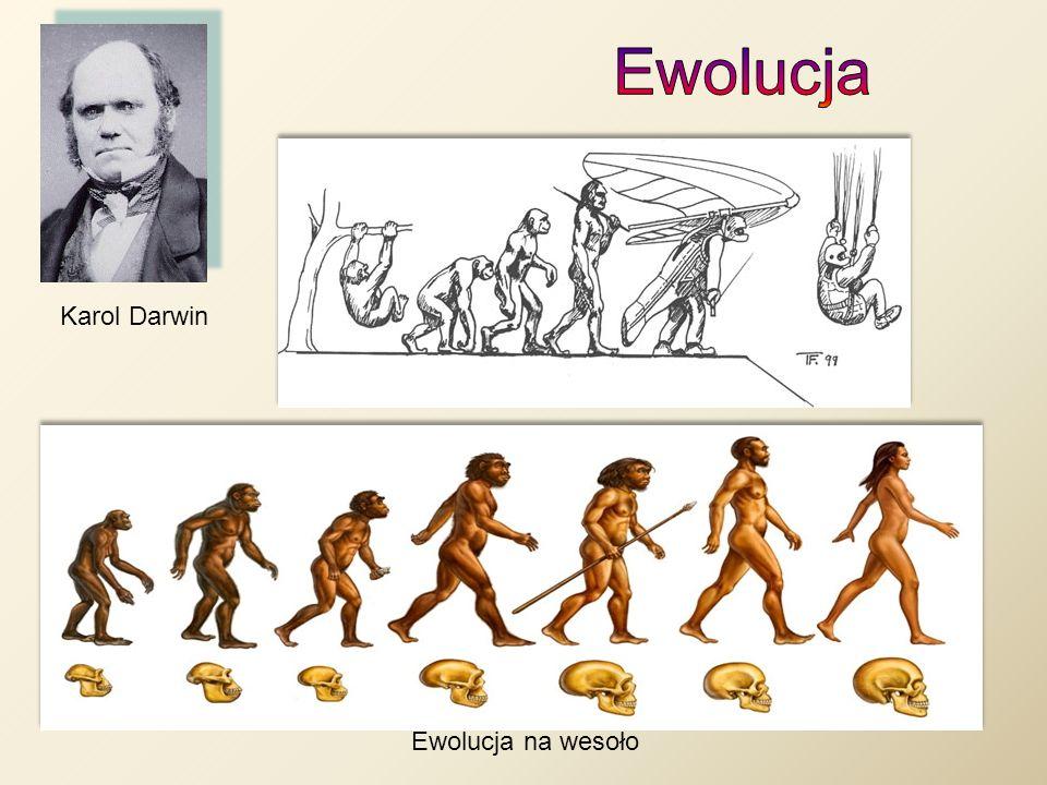 Ewolucja na wesoło Karol Darwin