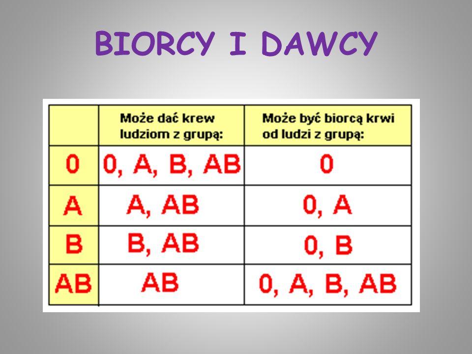 BIORCY I DAWCY