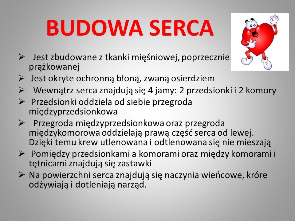 BUDOWA SERCA Jest zbudowane z tkanki mięśniowej, poprzecznie prążkowanej Jest okryte ochronną błoną, zwaną osierdziem Wewnątrz serca znajdują się 4 ja