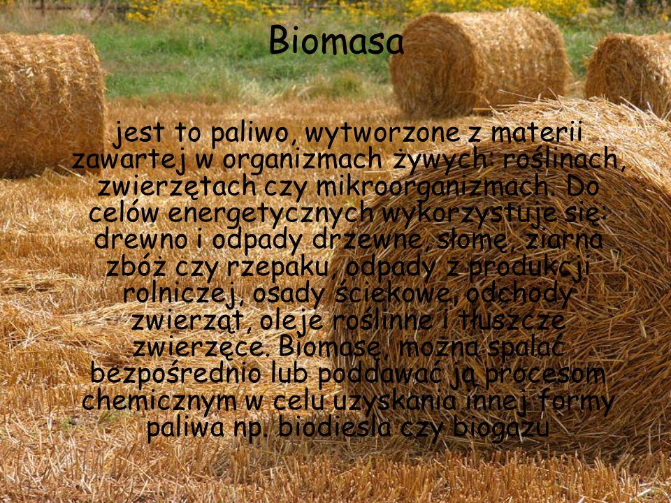 Biomasa jest to paliwo, wytworzone z materii zawartej w organizmach żywych: roślinach, zwierzętach czy mikroorganizmach. Do celów energetycznych wykor