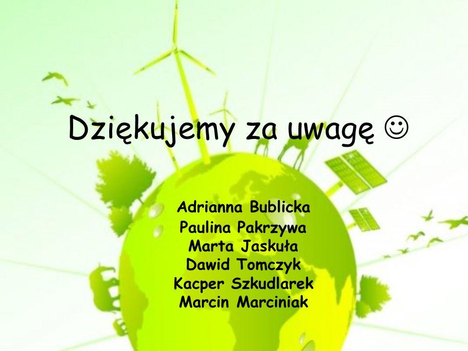 Dziękujemy za uwagę Adrianna Bublicka Paulina Pakrzywa Marta Jaskuła Dawid Tomczyk Kacper Szkudlarek Marcin Marciniak
