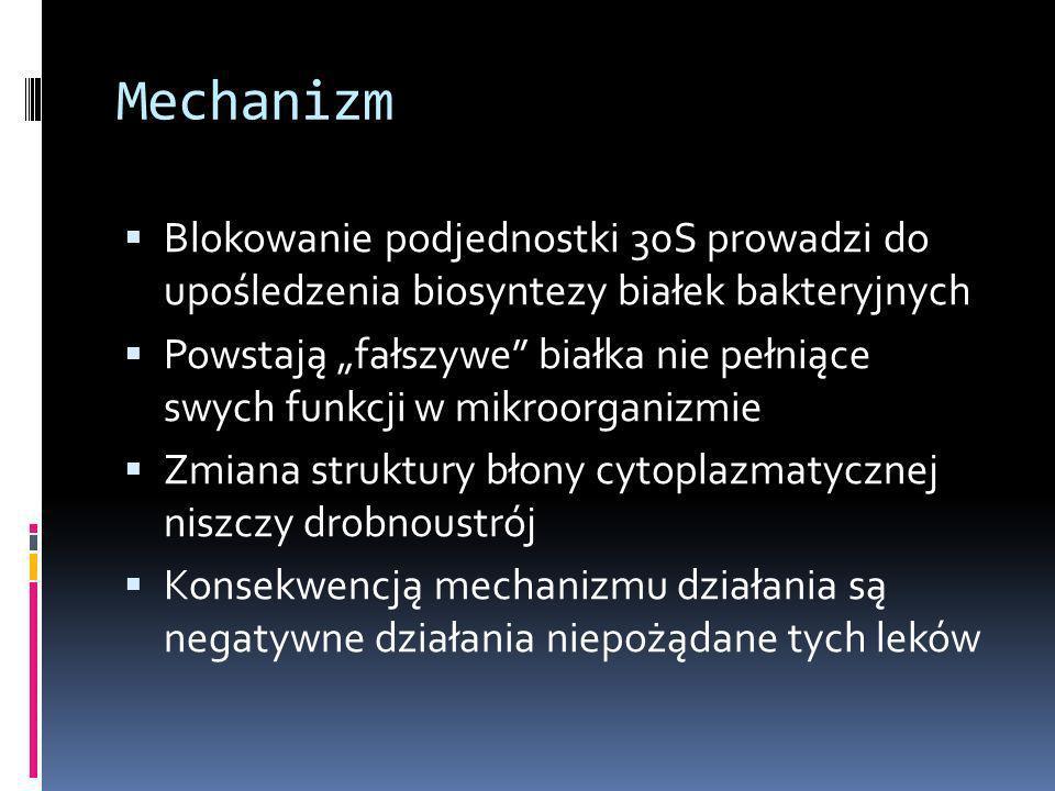 Mechanizm Blokowanie podjednostki 30S prowadzi do upośledzenia biosyntezy białek bakteryjnych Powstają fałszywe białka nie pełniące swych funkcji w mi
