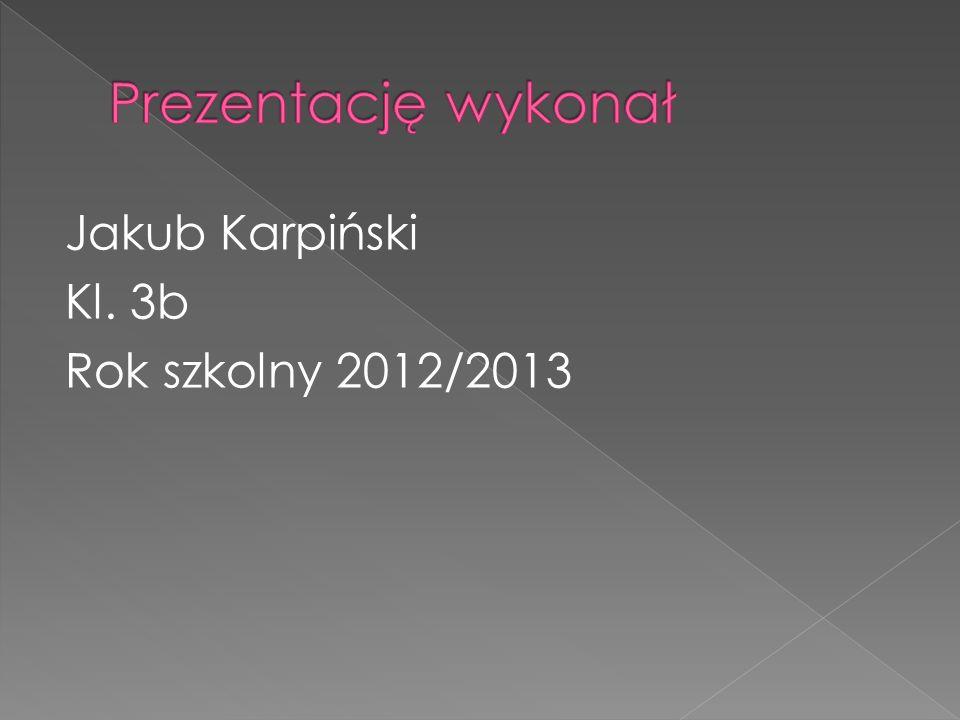 Jakub Karpiński Kl. 3b Rok szkolny 2012/2013