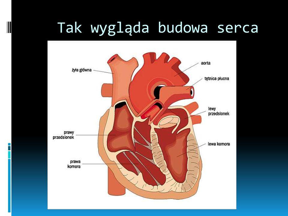 Serce Co to jest serce? Jest to centralny narząd układu krwionośnego położony w klatce piersiowej, w śródpiersiu środkowym, wewnątrz worka osierdziowe