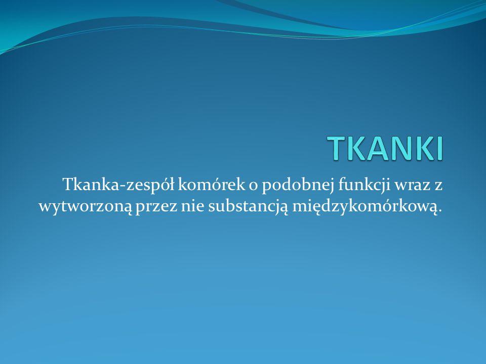 Tkanka-zespół komórek o podobnej funkcji wraz z wytworzoną przez nie substancją międzykomórkową.