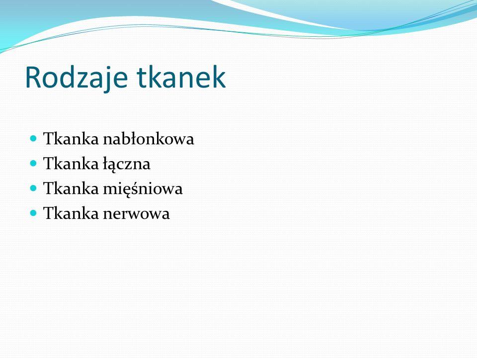 Rodzaje tkanek Tkanka nabłonkowa Tkanka łączna Tkanka mięśniowa Tkanka nerwowa