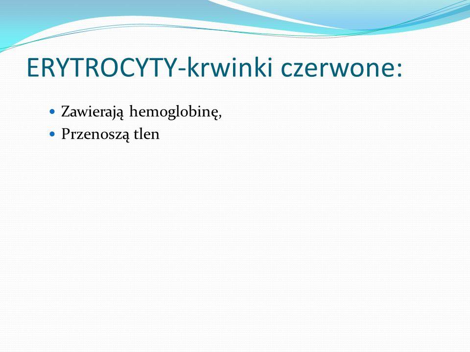 ERYTROCYTY-krwinki czerwone: Zawierają hemoglobinę, Przenoszą tlen