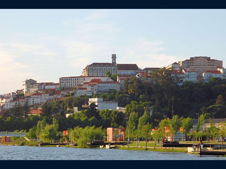 JARDIM BOTANICO (Ogród Botaniczny ) Jest to największy ogród botaniczny w Portugalii.