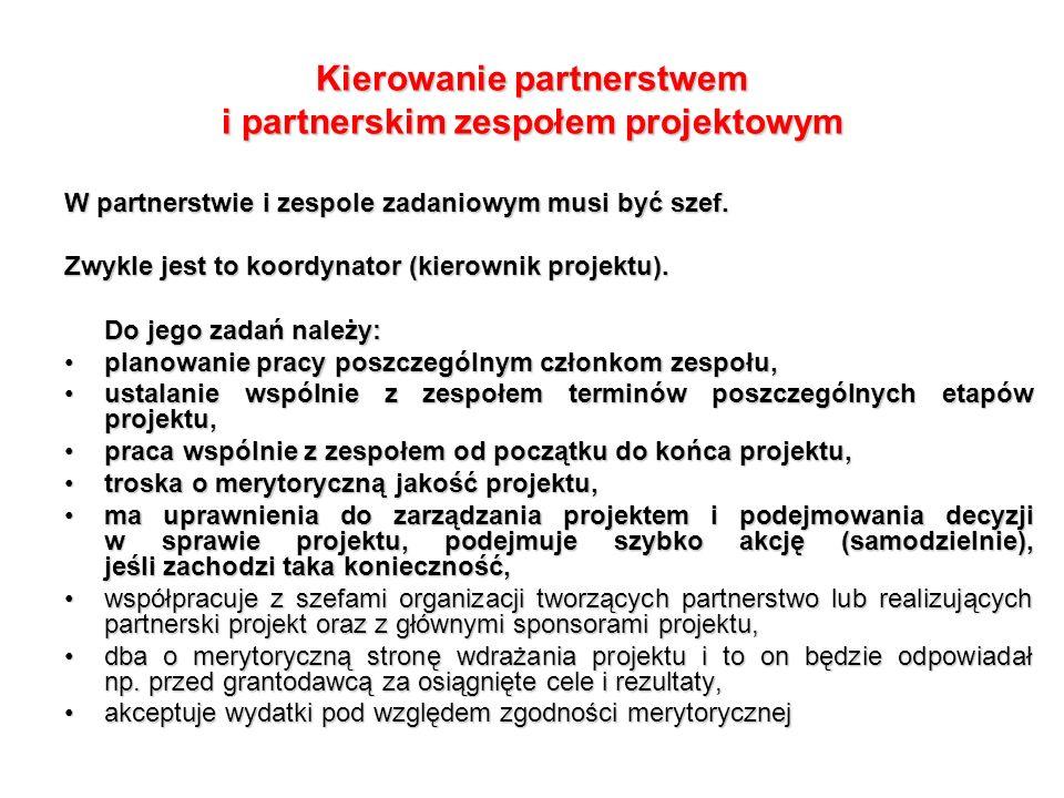 W partnerstwie i zespole zadaniowym musi być szef.