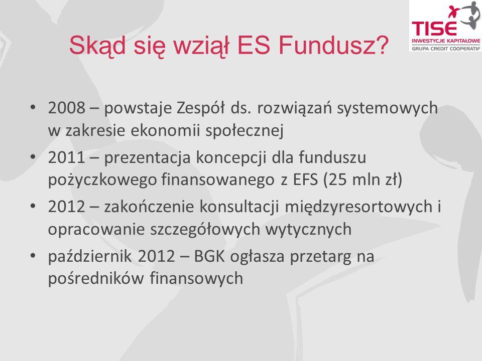 Skąd się wziął ES Fundusz.2008 – powstaje Zespół ds.