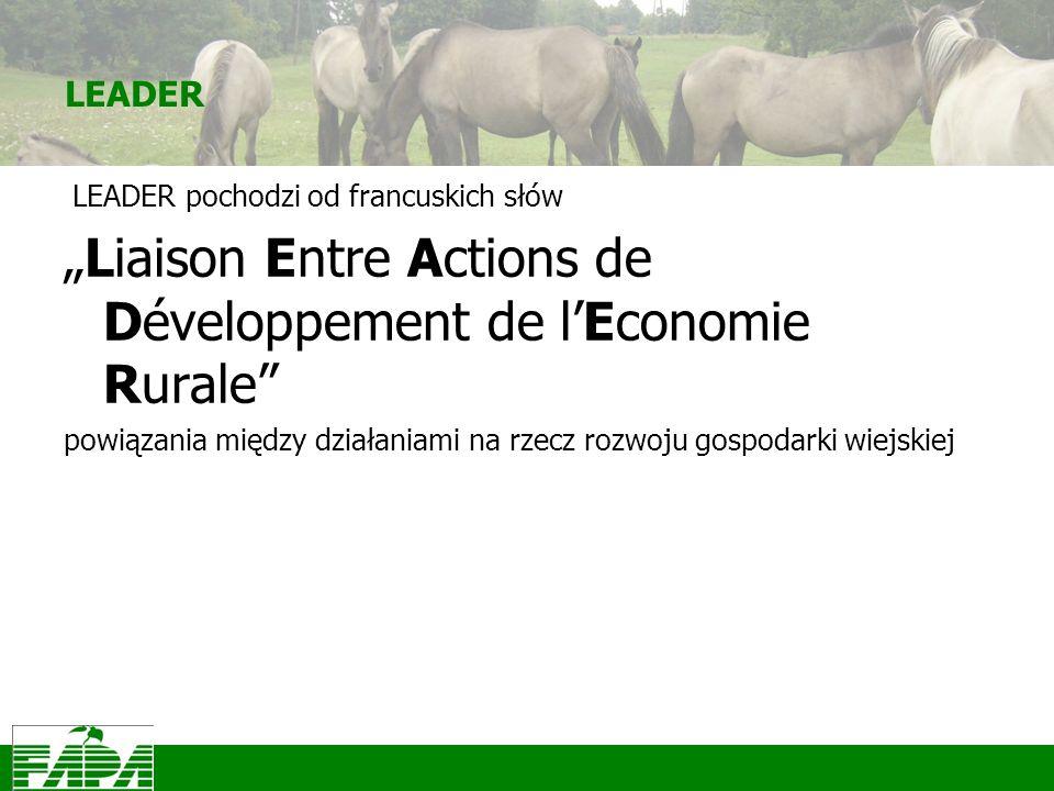 LEADER LEADER pochodzi od francuskich słów Liaison Entre Actions de Développement de lEconomie Rurale powiązania między działaniami na rzecz rozwoju gospodarki wiejskiej