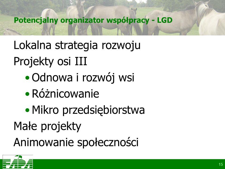 Potencjalny organizator współpracy - LGD Lokalna strategia rozwoju Projekty osi III Odnowa i rozwój wsi Różnicowanie Mikro przedsiębiorstwa Małe projekty Animowanie społeczności 15