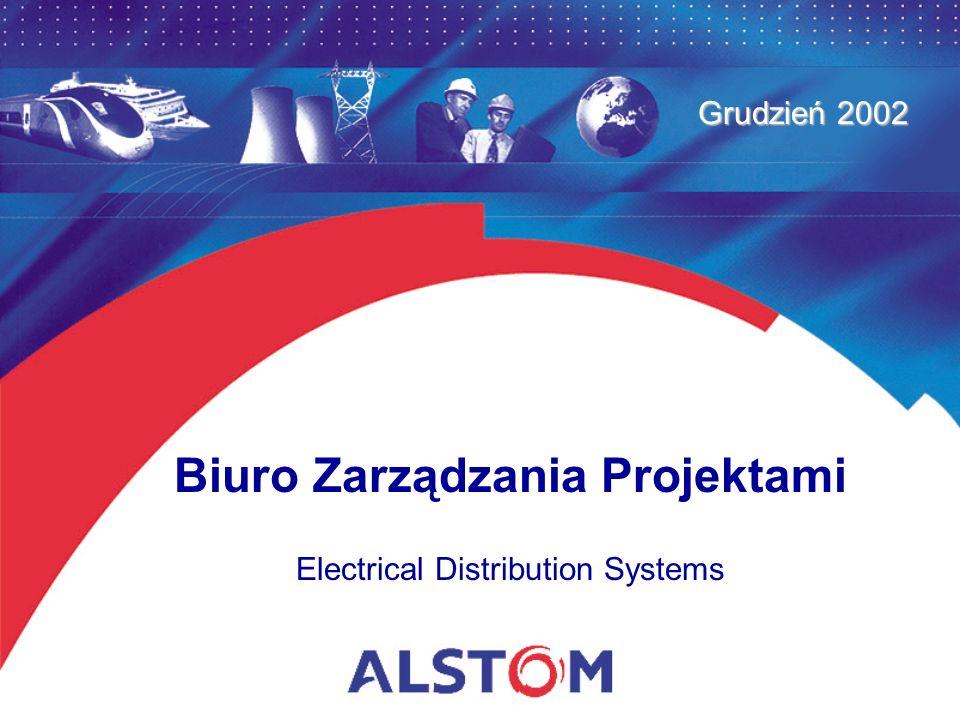 Biuro Zarządzania Projektami Electrical Distribution Systems Grudzień 2002
