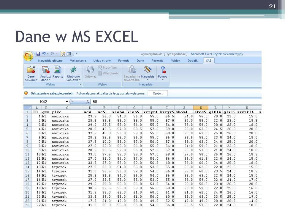 Dane w MS EXCEL 21