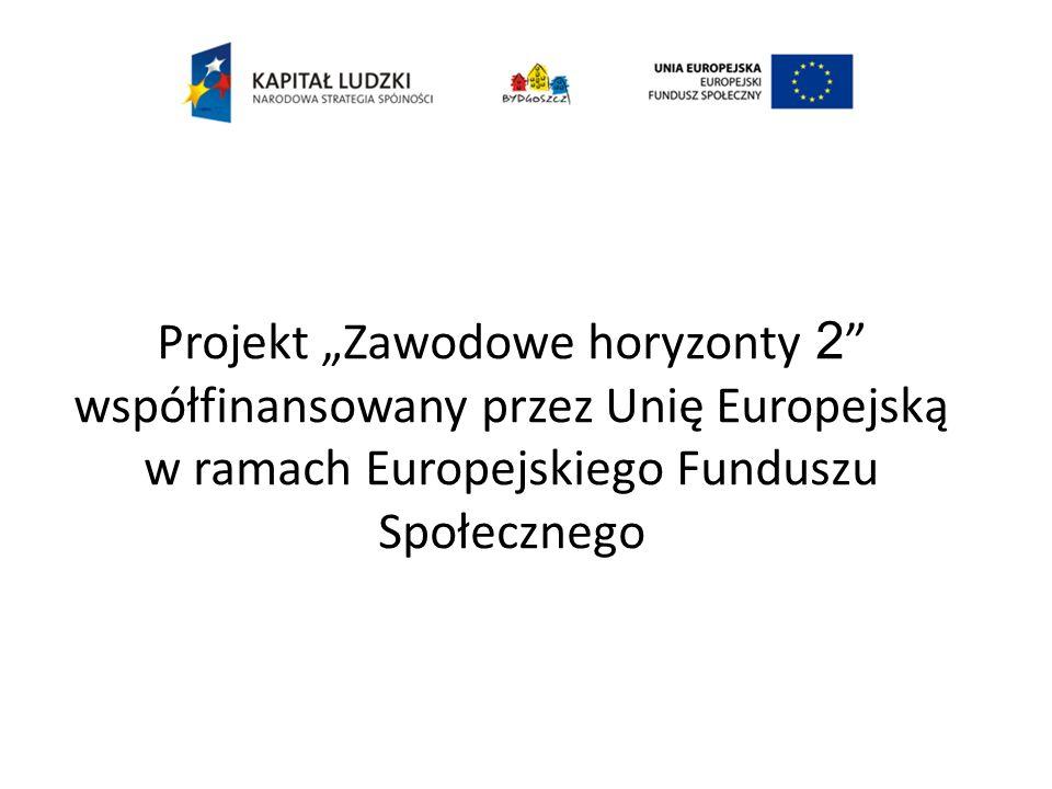 Projekt Zawodowe horyzonty 2 współfinansowany przez Unię Europejską w ramach Europejskiego Funduszu Społecznego
