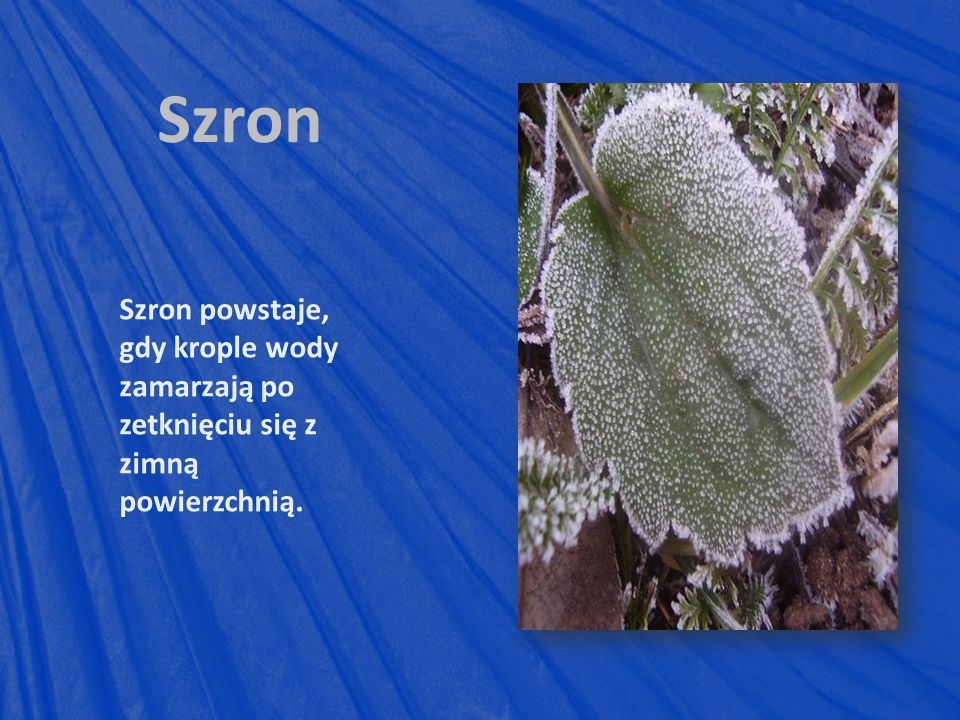 Szron Szron powstaje, gdy krople wody zamarzają po zetknięciu się z zimną powierzchnią.