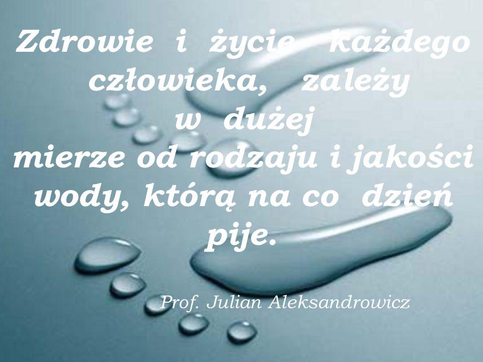 Zdrowie i życie każdego człowieka, zależy w dużej mierze od rodzaju i jakości wody, którą na co dzień pije.