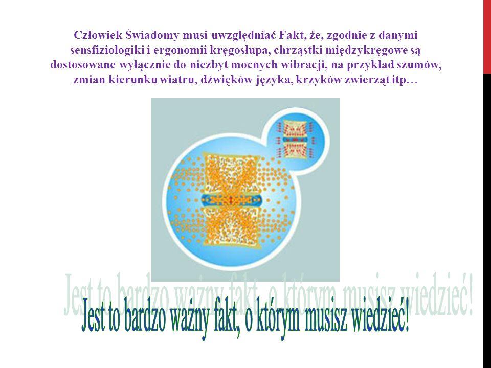 Człowiek Świadomy musi uwzględniać Fakt, że, zgodnie z danymi sensfiziologiki i ergonomii kręgosłupa, chrząstki międzykręgowe są dostosowane wyłącznie