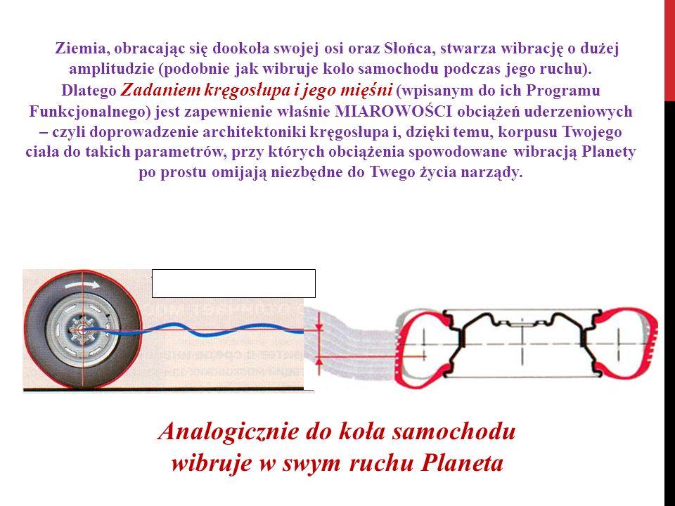 Ziemia, obracając się dookoła swojej osi oraz Słońca, stwarza wibrację o dużej amplitudzie (podobnie jak wibruje koło samochodu podczas jego ruchu). D