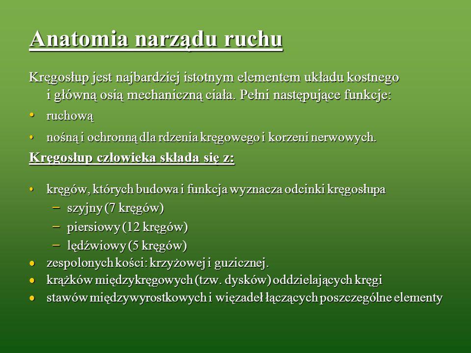Piśmiennictwo 1.Jóźwiak Z. Obciążenie układu ruchu w praktyce pielęgniarskiej IMP, Łódź 2000; 2.