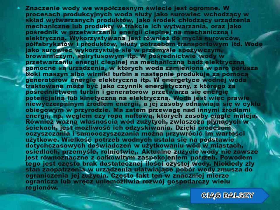 Znaczenie wody we współczesnym świecie jest ogromne. W procesach produkcyjnych woda służy jako surowiec wchodzący w skład wytwarzanych produktów, jako