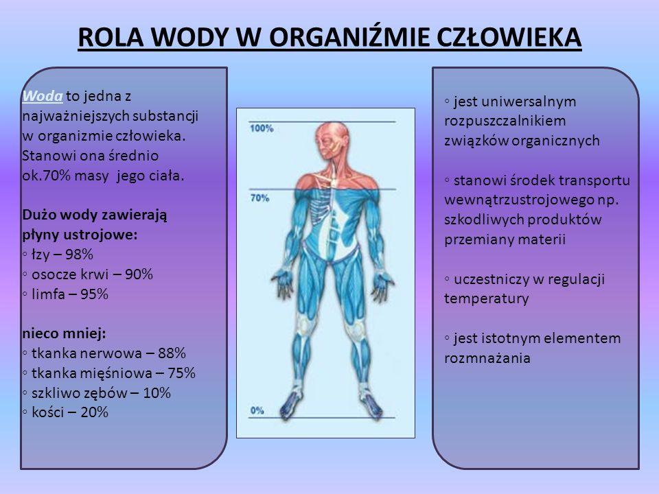 ROLA WODY W ORGANIŹMIE CZŁOWIEKA Woda to jedna z najważniejszych substancji w organizmie człowieka.