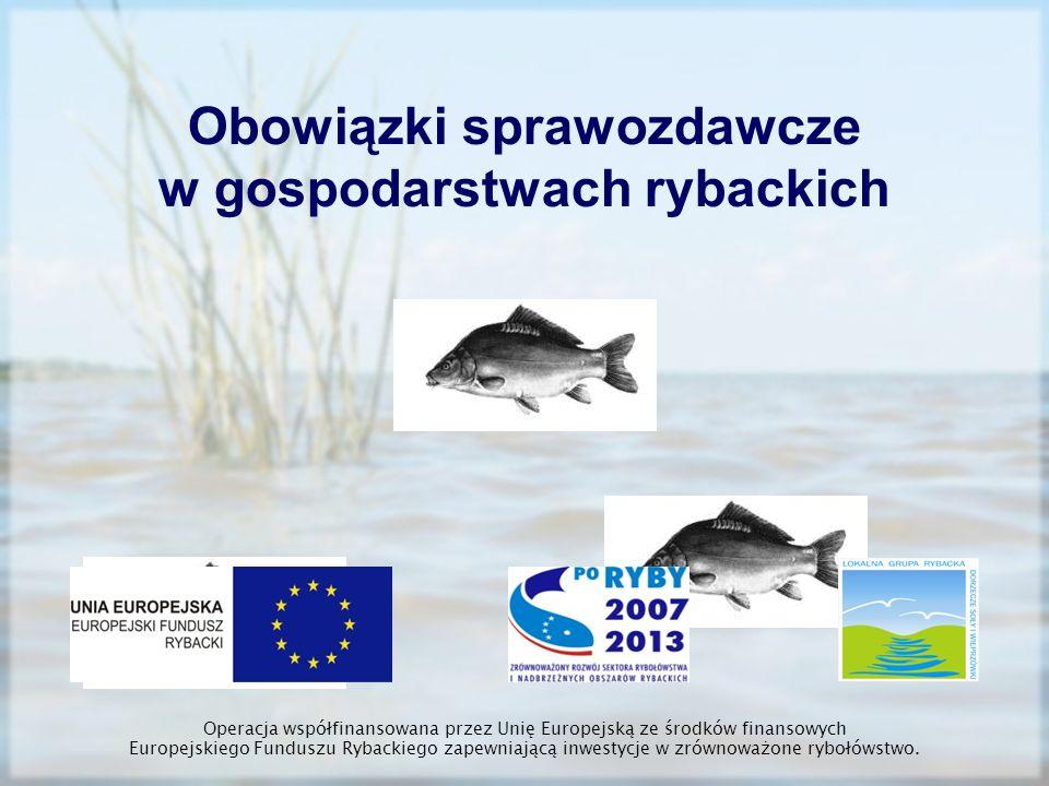 Przyrost gospodarczy brutto – odłów ryb ogółem (kg) – obsada ryb (kg) Przyrost z paszy – zużycie paszy ogółem ton w przeliczeniu na współczynnik 5 dzielone przez 5 Przyrost netto (pierwotny) – przyrost brutto – (przyrost z paszy + przyrost z nawożenia) przyrost z nawożenia – zużycie nawozów mineralnych X 1 z 1 kg nawozów uzyskujemy 1 kg przyrostu Operacja współfinansowana przez Unię Europejską ze środków finansowych Europejskiego Funduszu Rybackiego zapewniającą inwestycje w zrównoważone rybołówstwo.