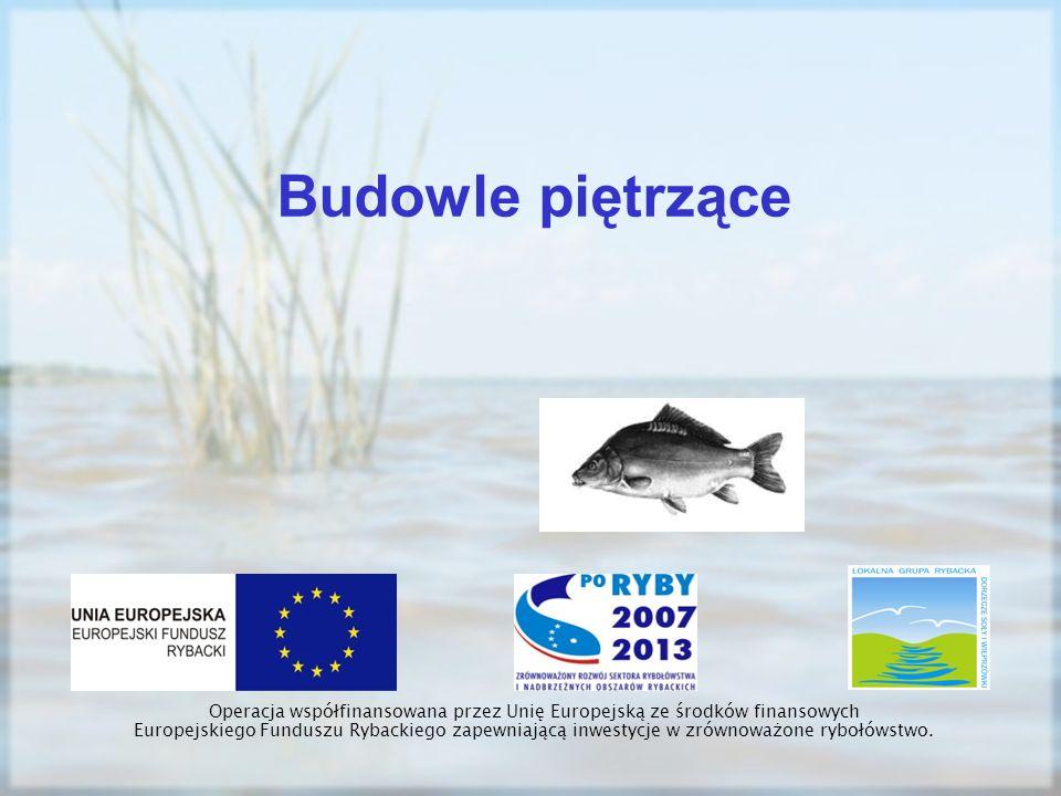 Budowle piętrzące Operacja współfinansowana przez Unię Europejską ze środków finansowych Europejskiego Funduszu Rybackiego zapewniającą inwestycje w z