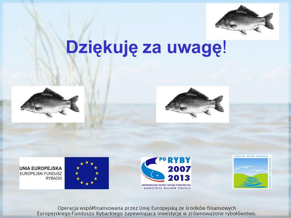 Dziękuję za uwagę! Operacja współfinansowana przez Unię Europejską ze środków finansowych Europejskiego Funduszu Rybackiego zapewniającą inwestycje w