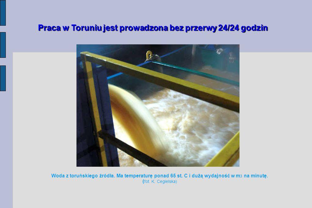Woda z toruńskiego źródła ma temperaturę ponad 65 st. C, o czym świadczą unoszące się kłęby pary ( fot. K. Cegielska)