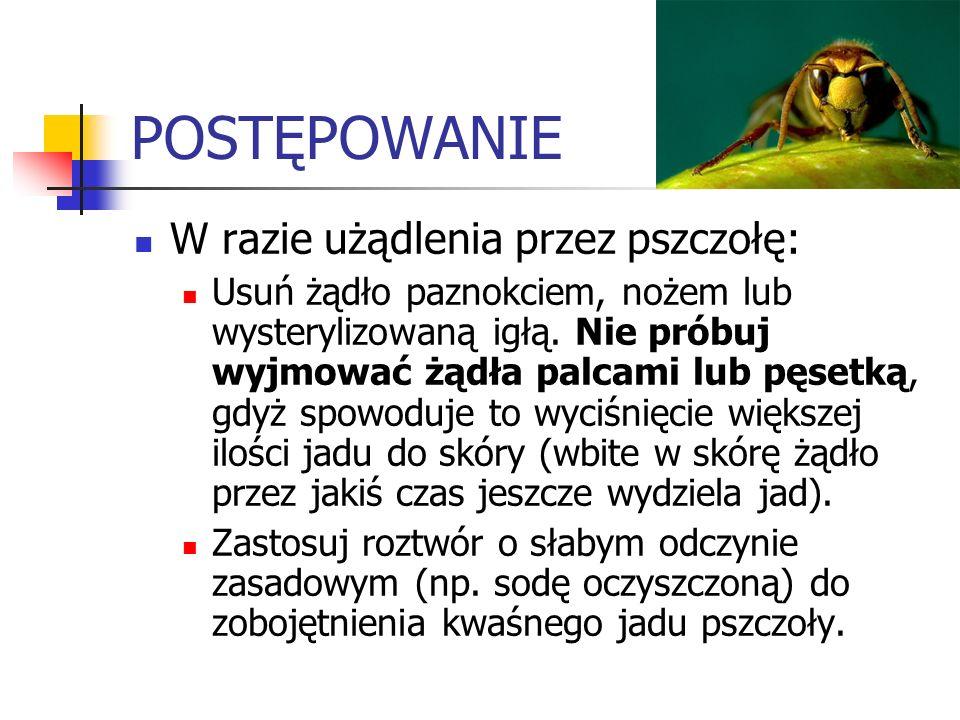 POSTĘPOWANIE W razie użądlenia przez pszczołę: Usuń żądło paznokciem, nożem lub wysterylizowaną igłą. Nie próbuj wyjmować żądła palcami lub pęsetką, g