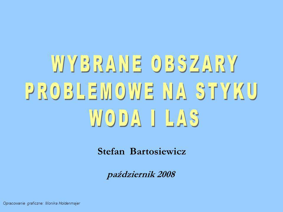 Stefan Bartosiewicz październik 2008 Opracowanie graficzne: Monika Holdenmajer