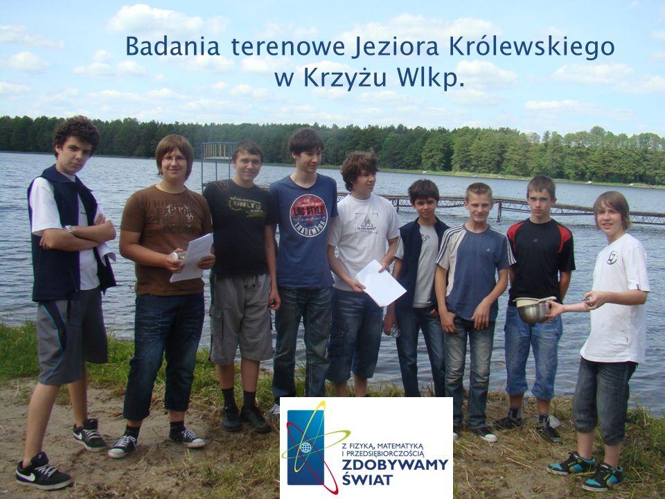 Badania terenowe Jeziora Królewskiego w Krzyżu Wlkp.