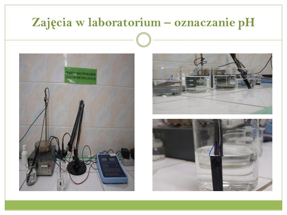 Zaj ę cia w laboratorium – oznaczanie pH