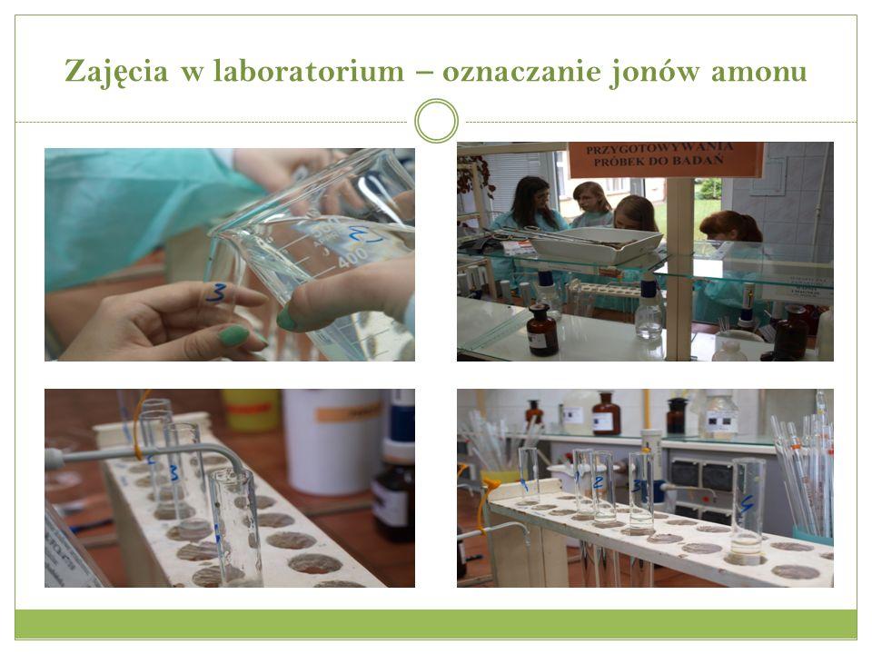 Zaj ę cia w laboratorium – oznaczanie jonów amonu