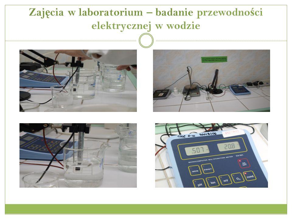Zaj ę cia w laboratorium – badanie przewodno ś ci elektrycznej w wodzie