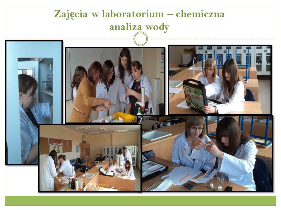 Zaj ę cia w laboratorium – chemiczna analiza wody