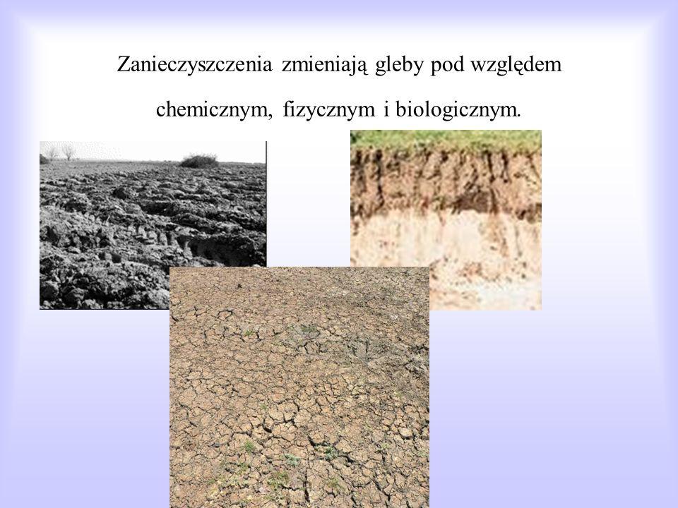Zanieczyszczeniami gleb Zanieczyszczeniami gleb i gruntów są wszelkie związki chemiczne i pierwiastki promieniotwórcze, a także mikroorganizmy, które występują w glebach w zwiększonych ilościach.