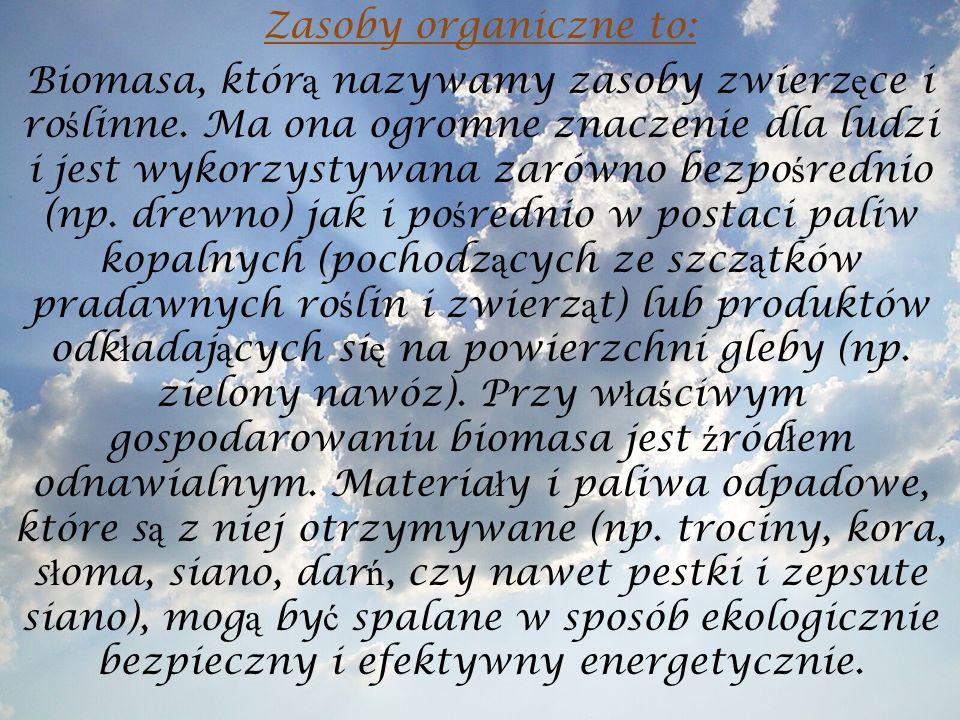 Źródła: http://pl.wikipedia.org/ http://pl.wikipedia.org/ http://www.google.pl/