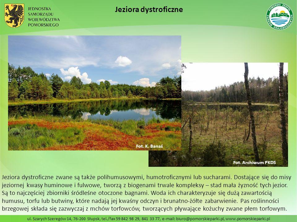 ul. Szarych Szeregów 14, 76-200 Słupsk, tel./fax 59 842 98 29, 841 33 77, e-mail: biuro@pomorskieparki.pl, www.pomorskieparki.pl Jeziora dystroficzne