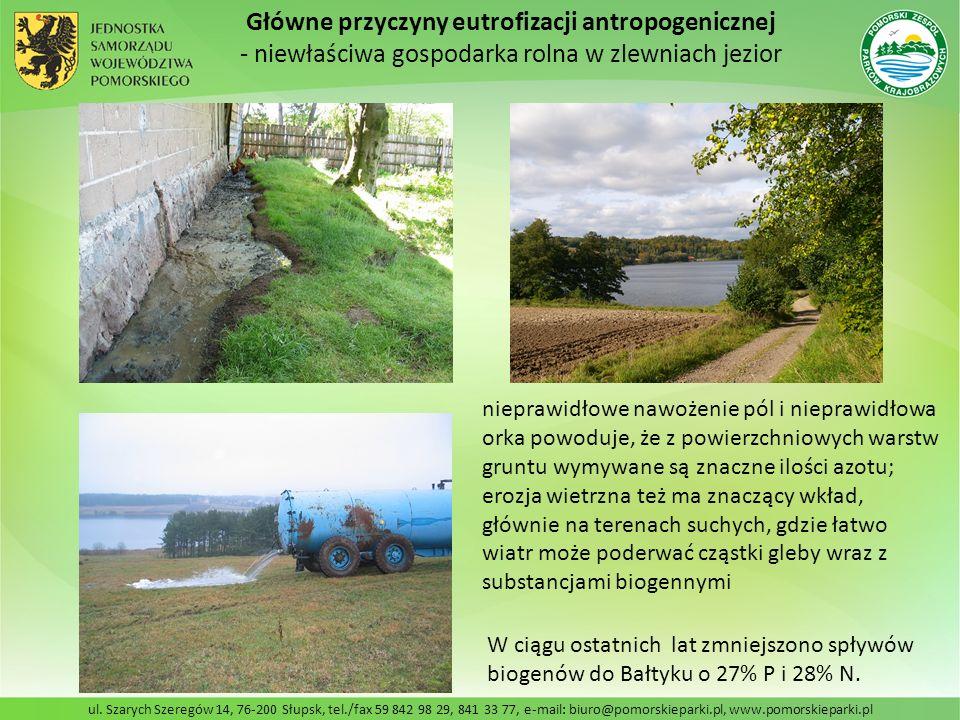 ul. Szarych Szeregów 14, 76-200 Słupsk, tel./fax 59 842 98 29, 841 33 77, e-mail: biuro@pomorskieparki.pl, www.pomorskieparki.pl Główne przyczyny eutr